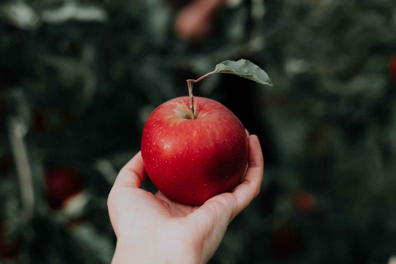 jabłko w ręce - 10 zasad diety, które pomogą Ci w walce z insulinoopornością